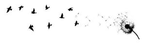 birds-footer-300x
