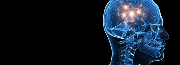 brain-610x222