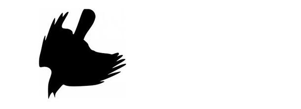 crow-610x222